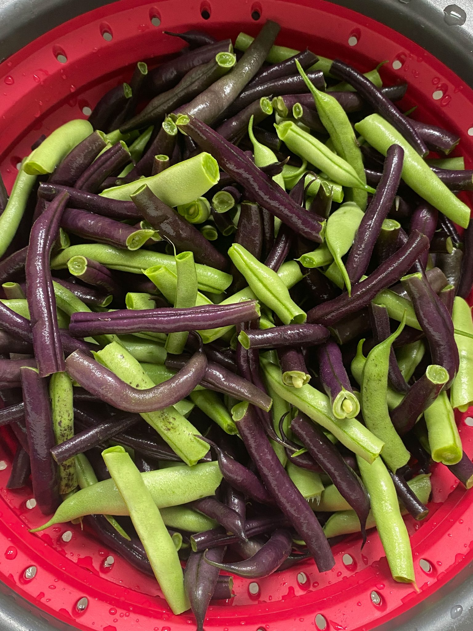 Fresh green and purple beans.