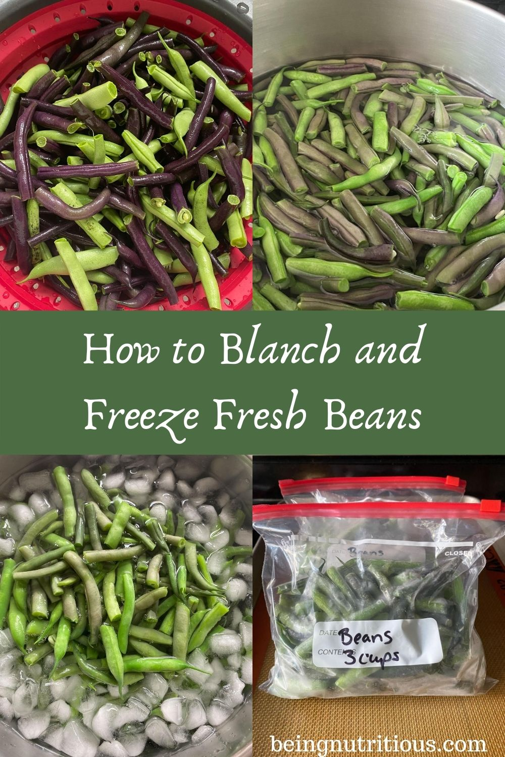 4 images: first is fresh beans, second is beans in boiling water, 3rd is blanched beans in ice bath, and 4th is frozen beans in zipper bags. Text overlay in green rectangle: How to Blanch and Freeze Fresh Beans.