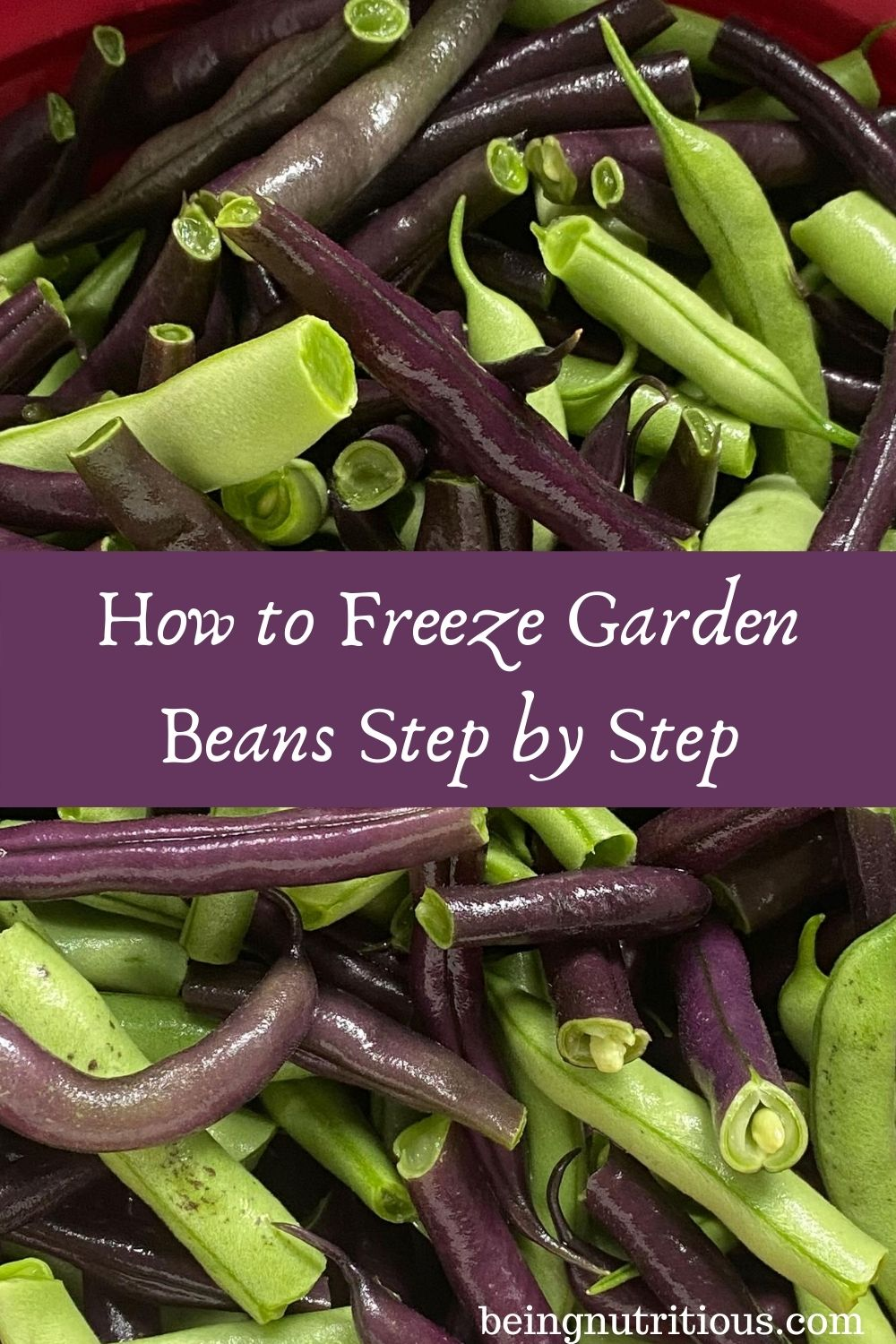Close up of fresh beans, trimmed and snapped. Text overlay in purple rectangle: How to Freeze Garden Beans Step by Step.
