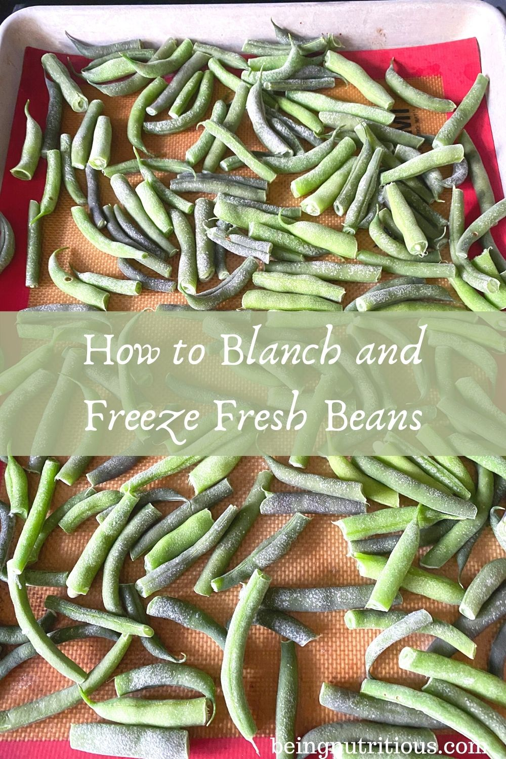 Frozen beans on a cookie sheet. Text overlay in a translucent green rectangle: How to Blanch and Freeze Fresh Beans.