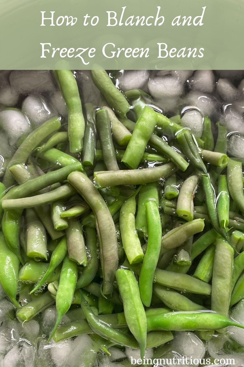 Blanched beans in an ice bath. Text overlay in a translucent green rectangle: How to Blanch and Freeze Fresh Beans.