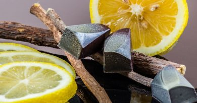 Black licorice candies sitting on licorice root, with lemon slices behind.
